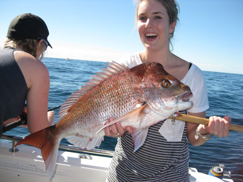 Gold Coast deep sea fishing